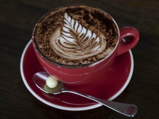 Altitude Coffee Roastery, Armidale cafe-5