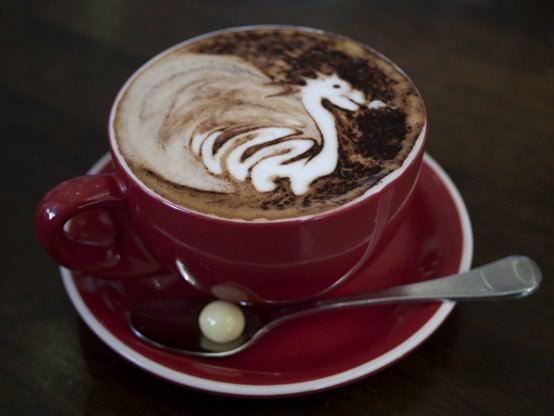 Altitude Coffee Roastery, Armidale cafe-6