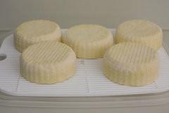 Homemade Camembert-3