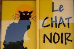 Le chat noir terrigal