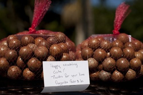 Lorne Macadamia Nut Farm-3