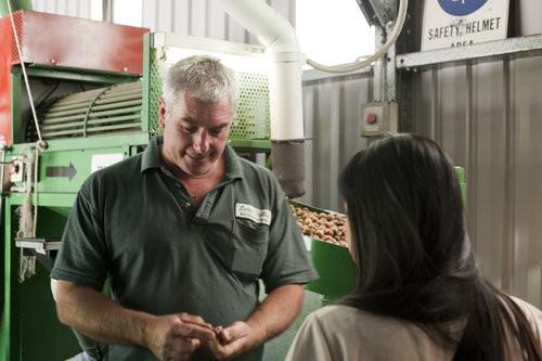 Lorne Macadamia Nut Farm