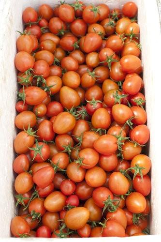 Ricardoes Tomatoes, vine ripened tomatoes-2