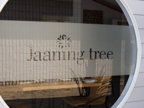 The Jaaning Tree Nambucca Heads-3
