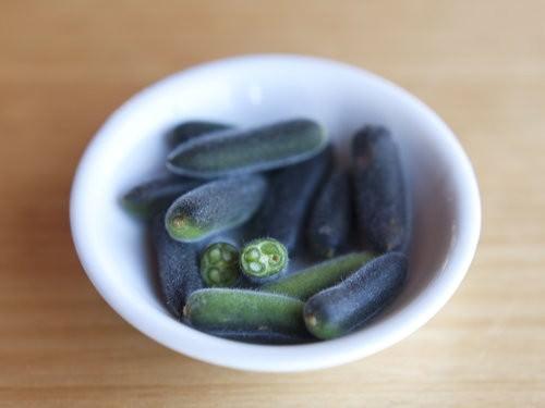 The Jaaning Tree Nambucca Heads, Dorrigo Pepper berries