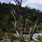Cataract Gorge and the Tamar River