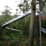Dismal Swamp Slide