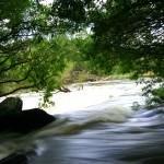 Tamar River in Flood