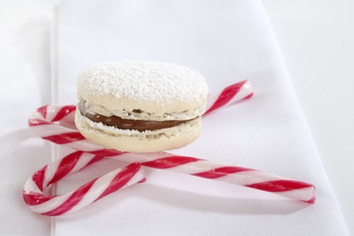 Christmas Macaron & Candy Cane