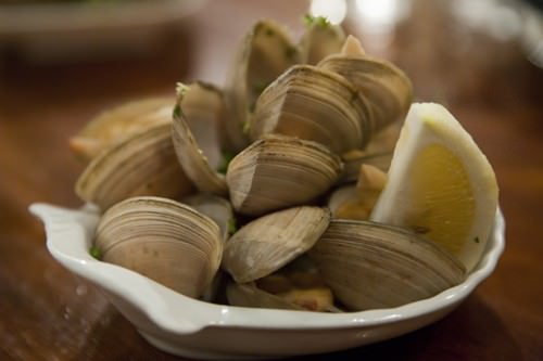 Auckland Clams