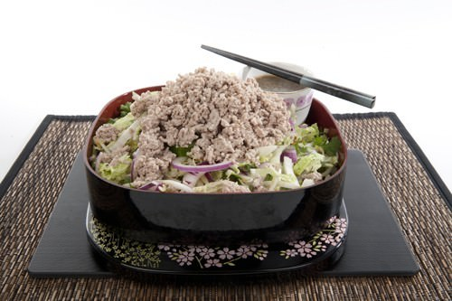 Healthy Crunchy Asian Pork Salad