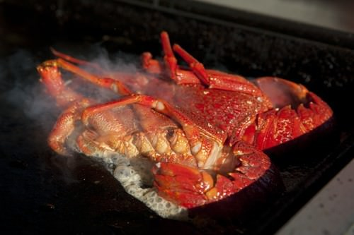 Kaikoura-New-Zealand-BBQ-Crayfish