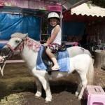 Carrara Markets Pony Rides