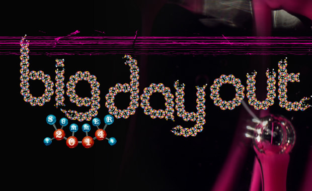 Big Day Out 2014 Logo