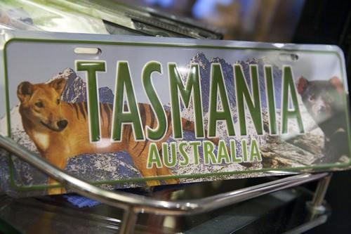 Tasmania Gift Shop