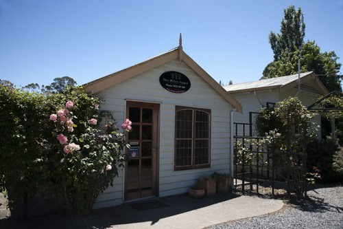 Three Willows Cellar Door