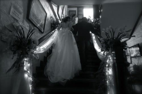 Ilustrado - Bride and groom