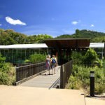 Mosman Gorge Visitor Centre