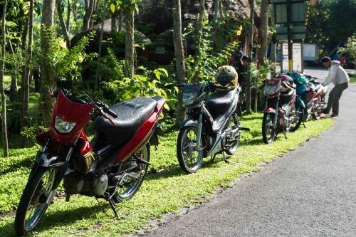 Ride to Lignon Hills