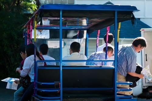Transportation 3-Passenger Cart