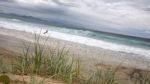 Surfing Clarkes Beach