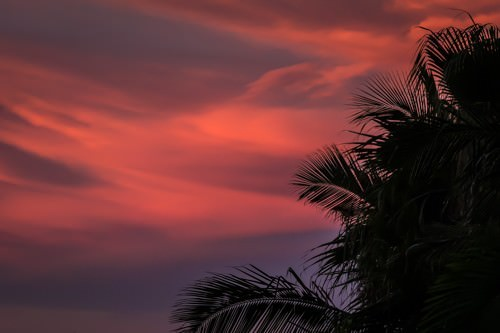 Raes on Wategos - Sunset View