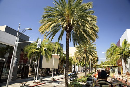 Rodeo Drive Hollywood