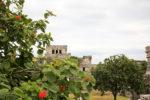 Mayan Ruins Tulum Mexico - Watchtower