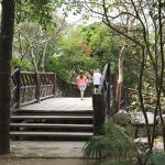 Tranquil Tulum Ruins Mexico