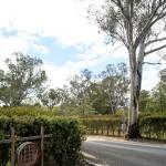 Mudgee Wine Region NSW