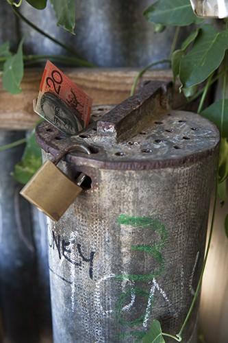 Blueberry Money Box