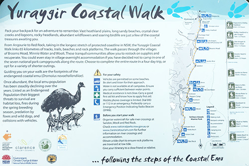 Yuraygir National Park Coastal Walk