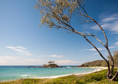 Pebbly Beach Yuraygir National Park NSW