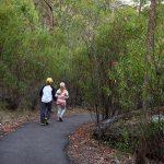 Mount Kaputar National Park Hike
