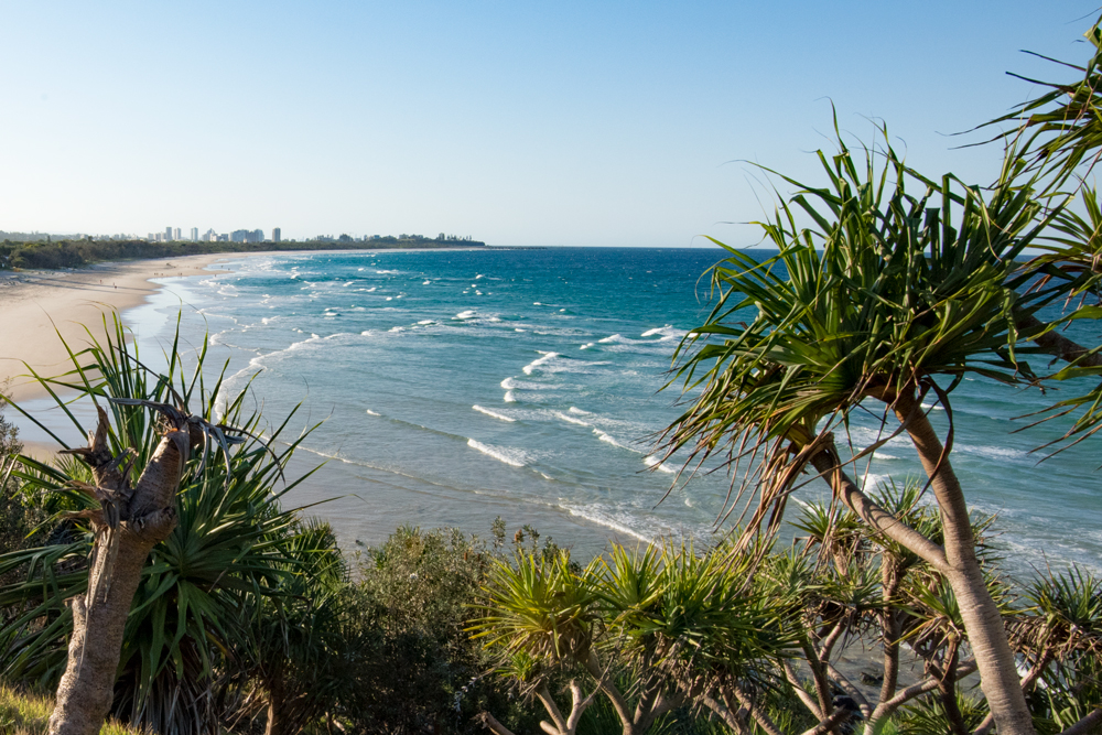 View of Fingal Beach and the Gold Coast from Fingal Head