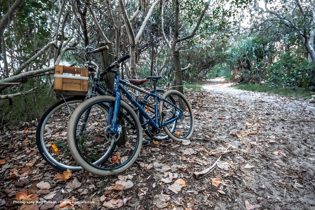 Fingal Head path to lighthous