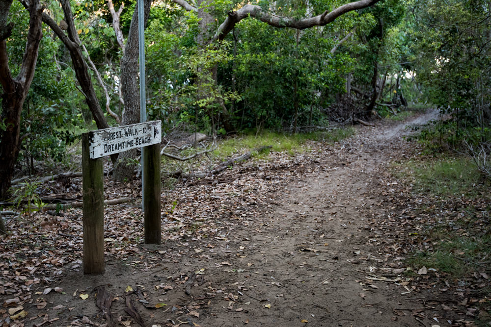 path to dreamtime beach nsw